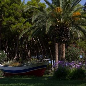 Alba Adriatica